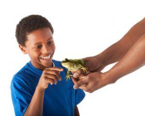 boy-frog